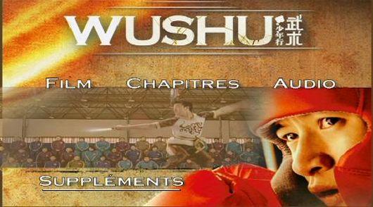 wushu_1